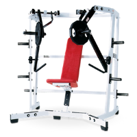 preowned hammer strength plate loaded